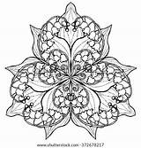 Lily Mandala Coloring Flower Valley Outlines Posy Vector Adults Background Pages Adult Shutterstock Outline Posies Flowers Tattoo Isolated Vectors Bell sketch template