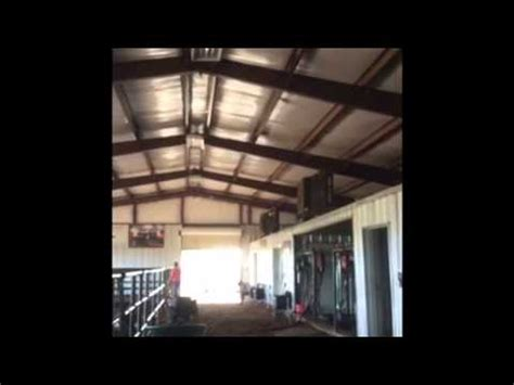 Steer Barn by Managing A Show Cattle Barn