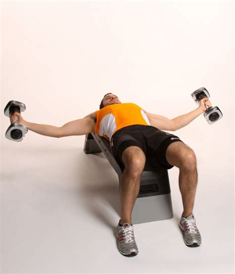 pec deck flyes with dumbbells dumbell flyes images frompo