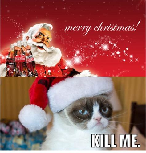 Merry Christmas Cat Meme - grumpy christmas quotes quotesgram