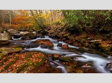 Great Smoky Mountains National Park Is Americas