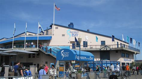 file aquarium of the bay exterior 1 jpg wikimedia commons