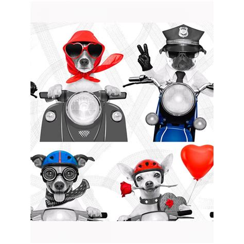 biker dogs wallpaper muriva    dog wallpaper
