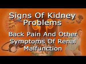 Signs Of Kidney Problems