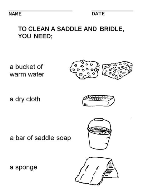 images  horse grooming worksheets horse