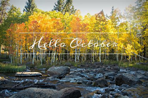 Hello October | Many of my friends know that October is my ...