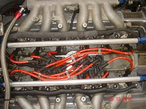I Also Have A Jaguar Xj 12 1996 And I Change Spark Plugs But Failed Number All The Wires  Is
