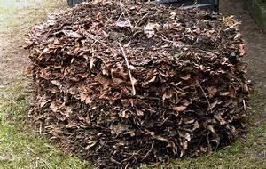 Kompost Richtig Anlegen : richtig kompostieren standort kompost komposter und ~ Lizthompson.info Haus und Dekorationen