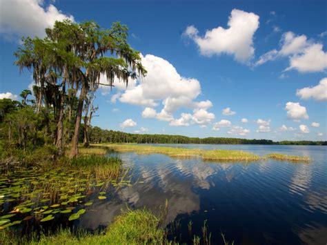 louisa lake park state water fl paddling flat