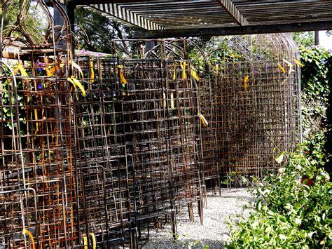 Metal Arbors And Trellises by Metal Arbors And Trellises Berkeley Horticultural