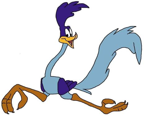 Road Runner Clipart