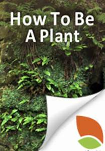 How To Be A  Plant   Photosynthetic  Multicellular