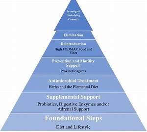 Evidence Based Sibo Natural Treatment Plan