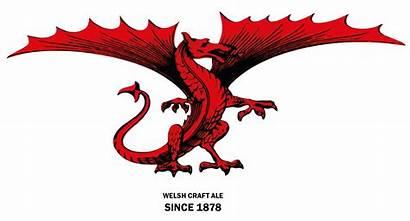 Dragon Double Celtic Heart Felinfoel Craft Welsh