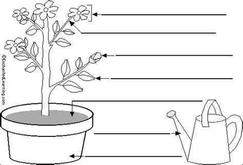 labelling  plant