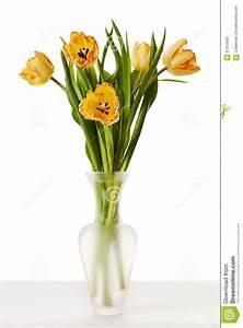 Tulpen In Vase : tulpen gele rode oranje tulip flowers in vase stock afbeelding afbeelding bestaande uit rood ~ Orissabook.com Haus und Dekorationen
