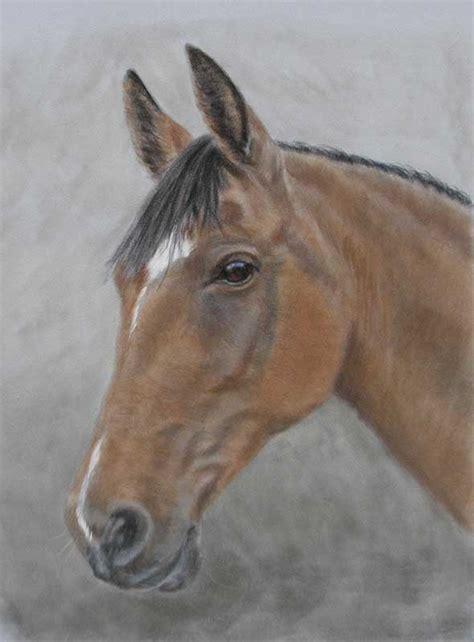 horse portraits  pastel  oils equine portrait artist
