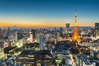 Eat like a local in Tokyo - The Travel Enthusiast The Travel Enthusiast