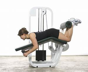 leg curl exercise leg curl for legs muscles workout