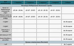 Сроки сдачи налоговой отчетности в России