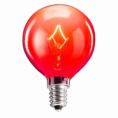 Bulbs Scentsy Wax Warmers Warmer Candle Flameless