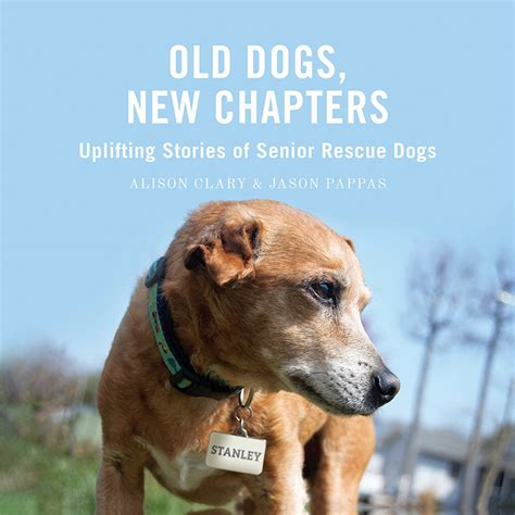 Old Dogs New Chapters Uplifting Stories Of Senior Rescue