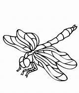 Dragonfly Coloring Pages Printable Dragonflies Cartoon Drawing Clipart Animals Realistic Clip Cliparts Sheet Getdrawings Adult Library Getcoloringpages Attribution Forget Link sketch template