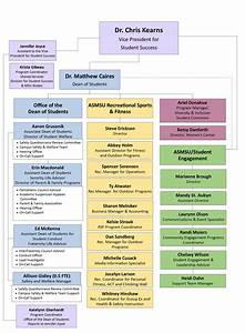 Withdrawal Chart Organizational Chart Office Of The Dean Of Students