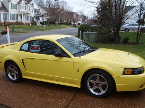 2001 ford mustang coupe 2001 ford mustang svt cobra pictures cargurus
