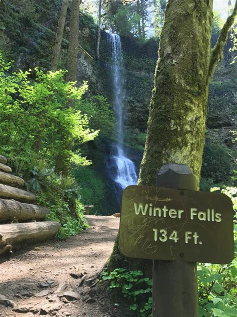 great oregon hikes silver falls state park author paul