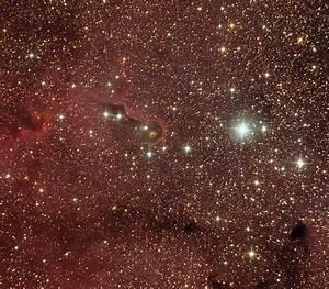 IC 1396 - Elephant's Trunk Nebula   Astronomy image at ...