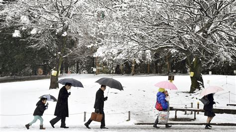 weather japan northern tokyo snowfall snow hurt accurate forecasts provides cities conditions local around asian