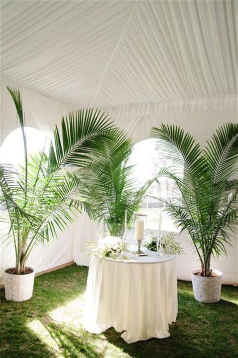 ideas  wedding plants  pinterest natural
