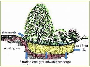 Landscaping And Lawn Care