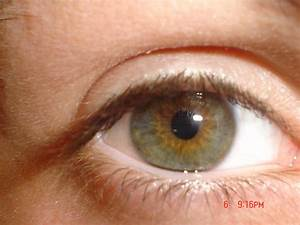 Green eyes and european phenotypes - Page 3