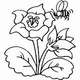 Bee Coloring Pages Print sketch template