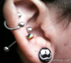 Ear Piercings - Page 58