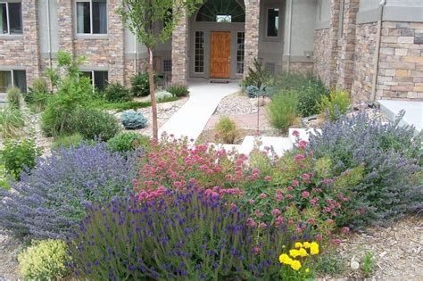 colorado landscaping ideas 34 best images about gardens on pinterest native plants xeriscape plants and colorado