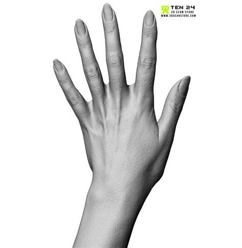 Female Hand 02 Fingers Straight
