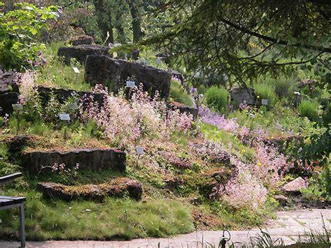 Restaurant Nähe Botanischer Garten Hamburg by Botanischer Garten Hamburg Im Mai