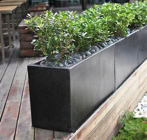 hdpe planter  perfect solution   indoor