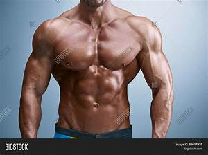 Attractive Male Body Builder On Image  U0026 Photo