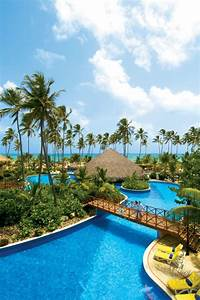 best ideas about honeymoon punta cana punta cana resorts With honeymoon in punta cana