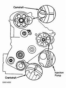 1985 Toyota Corolla Serpentine Belt Routing And Timing
