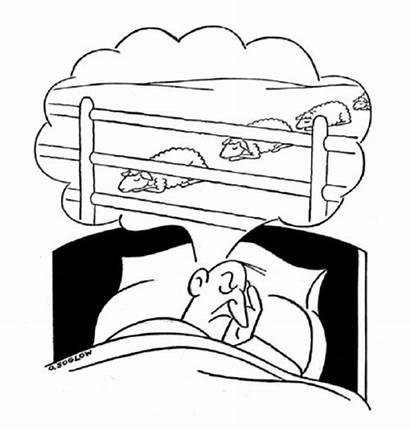 Sleep Cartoons Cartoon Sheep Yorker Sleeping Insomnia