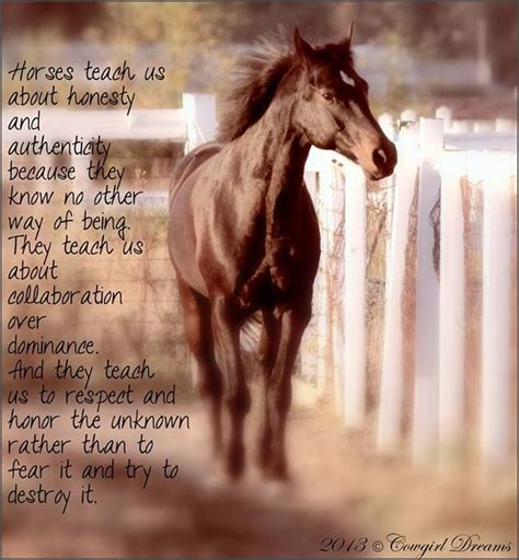 quotes horse horses teach equine equestrian being honest they cowgirl poems riding sayings way quote pet know them fear inspirational