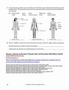 Human Anatomy Laboratory Manual With Cat Dissections 8th