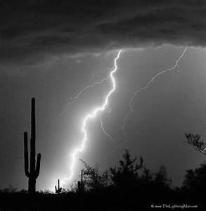Lightning Strike in Black and White   Giant saguaro cactus ...