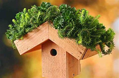 diy birdhouse ideas  plans  tutorials balcony garden web
