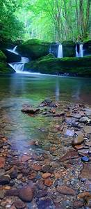 1119 best Streams, Lakes & Rivers images on Pinterest ...